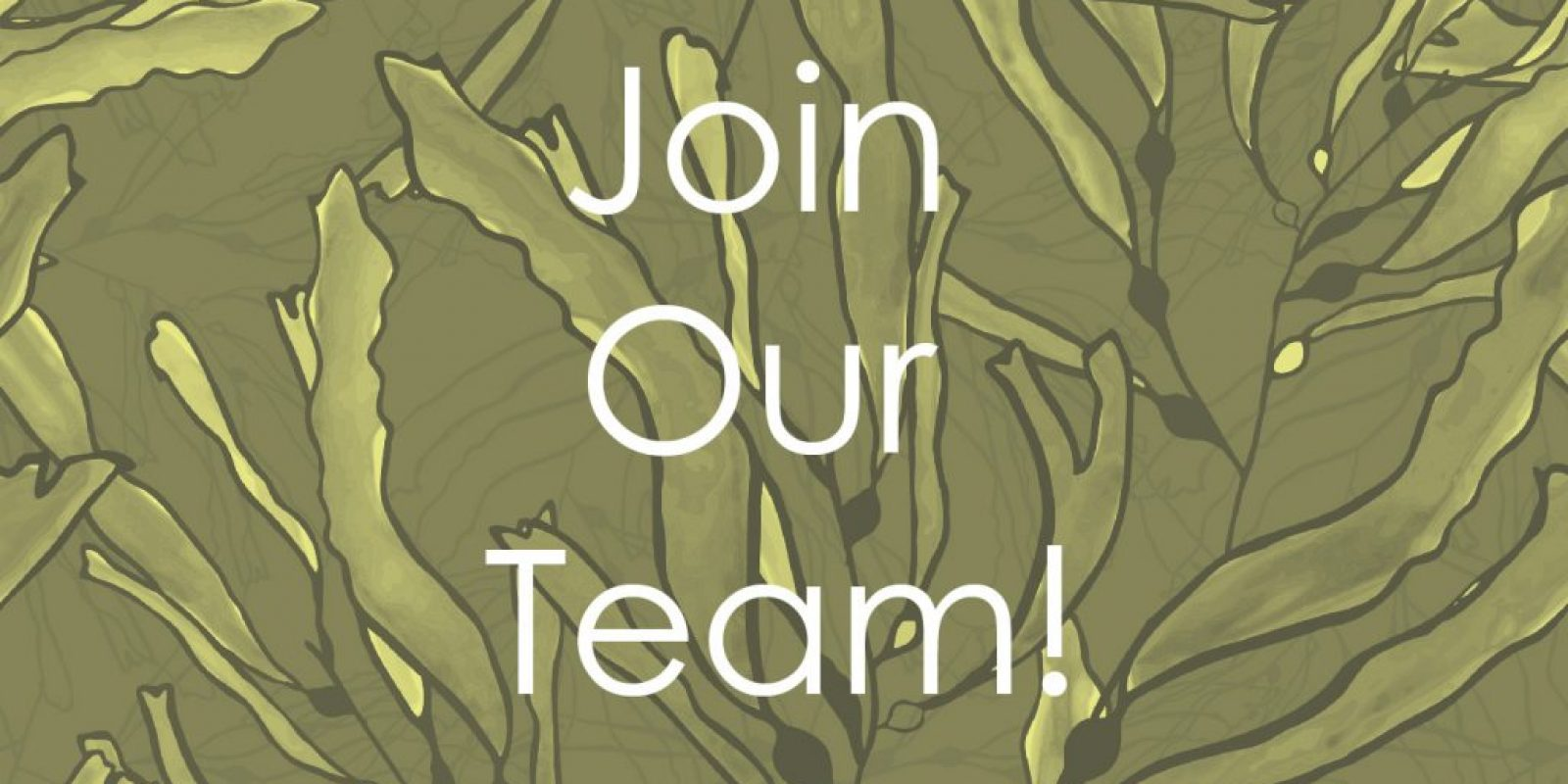 Join Our Team KB